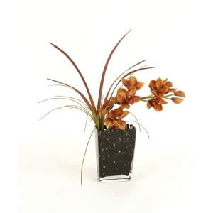 potted orchid plant in traditional pot